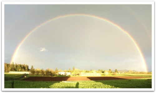 double rainbow shadow