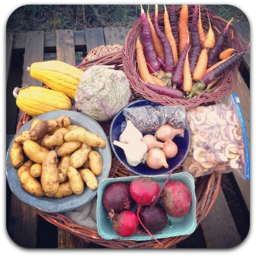 winter csa share week 3