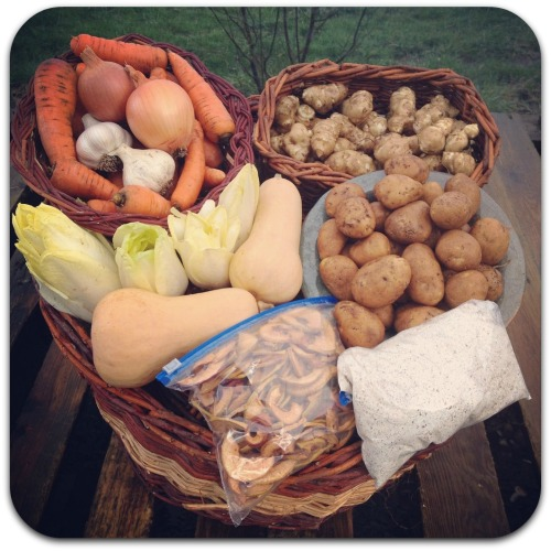 winter csa share week 6