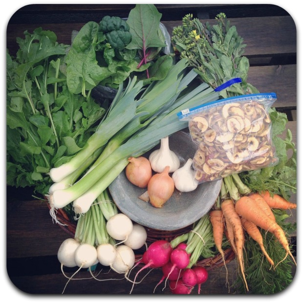 winter csa share week 11