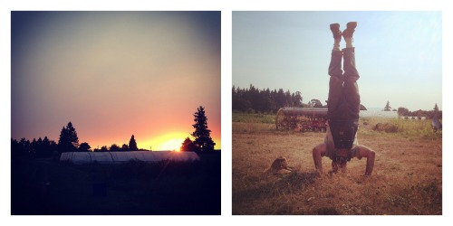 head stands and sunsets